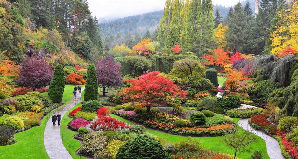 Du lịch Canada - Butchart garden