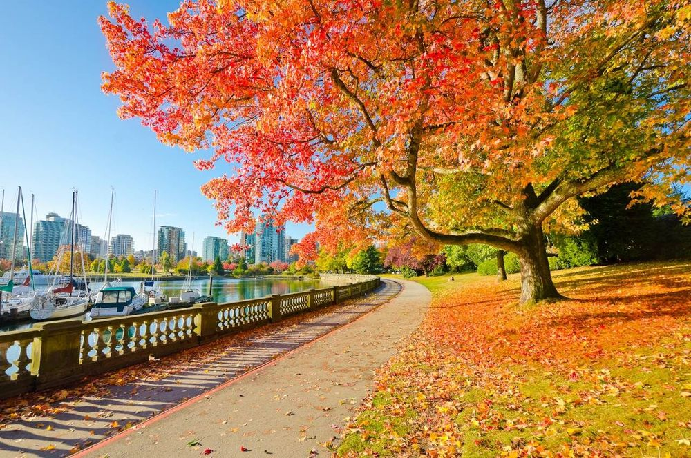 Du lịch Canada - Stanley Park