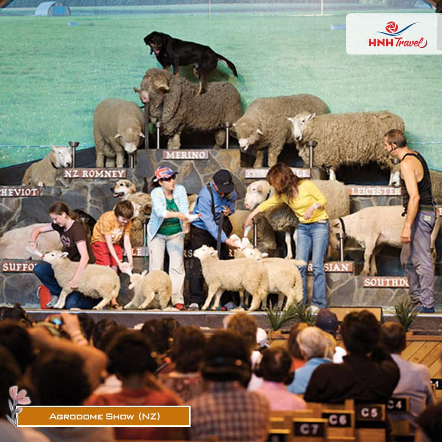 Agrodome-show